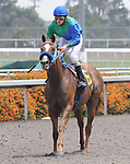May 16, 2010.Swiss Wild Cat riden by Christian Santiago Reyes, wins the 2nd for Maidens, Fillies, Two Years Old, at Hollywood Park, Inglewood, Ct