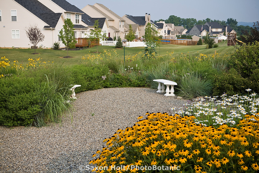 Small backyard meadow garden with gravel patio lawn substitute in community landscape housing development
