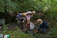 Kinder mit Kescher an einem Bach, fangen und beobachten Wassertierchen, Keschern