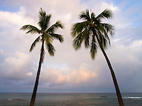 A quiet sunrise behind two palm trees at Honl's Beach, Kailua-Kona, Big Island.