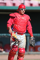 Philadelphia Phillies Torre Langley during an exhibition game vs the Netherlands National Team  at Al Lang Field in St. Petersburg, Florida;  March 13, 2011.  Photo By Mike Janes/Four Seam Images