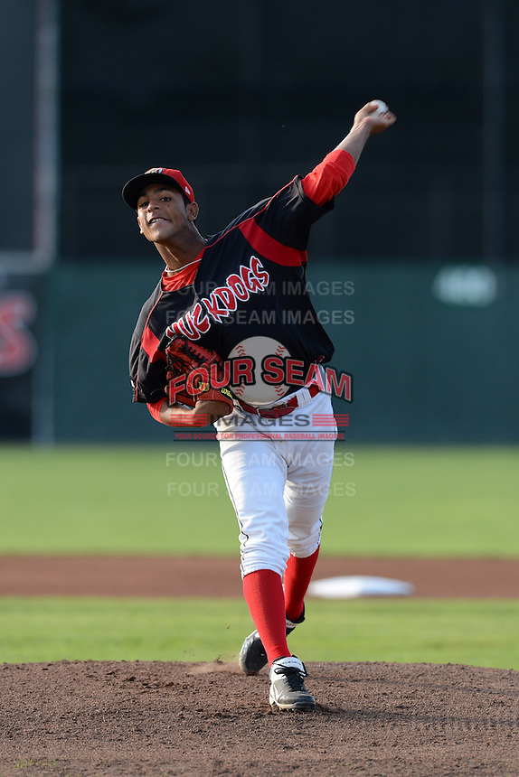 Batavia Muckdogs pitcher Jose Garcia (33) during a game against the Williamsport Crosscutters on September 4, 2013 at Dwyer Stadium in Batavia, New York.  Williamsport defeated Batavia 6-3 in both teams season finale.  (Mike Janes/Four Seam Images)
