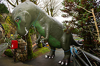 Pictured: A general view of the Dinosaur outside of Dan Yr Ogof, The National Showcaves Centre for Wales, Abercraf, Swansea, Wales, UK<br /> Re: A 15ft tall Allosaurus has become a star attraction since it arrived at the front garden of a house in Cwmbran, south Wales, with hundreds of people already stopping to get a glimpse.<br /> It was auctioned off by Dan-yr-Ogof , The National Showcaves Centre for Wales for charity and Jerry Adams was the highest bidder with an offer of £1600.<br /> Motorists couldn't believe what they were seeing when they passed the dinosaur, complete with number plate on its tail, as it was towed on a trailer around 50 miles along the M4 from the Abercrave attraction on the outskirts of Swansea to its new home.<br /> Now people are contacting the showcaves on Facebook to find out exactly where it is so they can take their kids to see the creature, which measures 30ft in length.