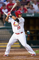 Tyler Rahmatulla (29) of the Springfield Cardinals stands at bat during a game against the Northwest Arkansas Naturals at Hammons Field on August 23, 2013 in Springfield, Missouri. (David Welker/Four Seam Images)