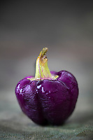 Gastronomie Générale / Diététique /Mini-Navet Violet  AB  //  General Gastronomy / Diet / Mini-Turnip Violet AB
