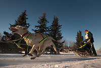 A musher and his team begin a race during the Alaskan Sled Dog & Racing Association Exxon Mobile Open in Anchorage, Alaska.