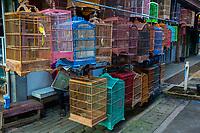 Yogyakarta, Java, Indonesia.  Birds and Bird Cages Awaiting their Buyers, Bird Market.