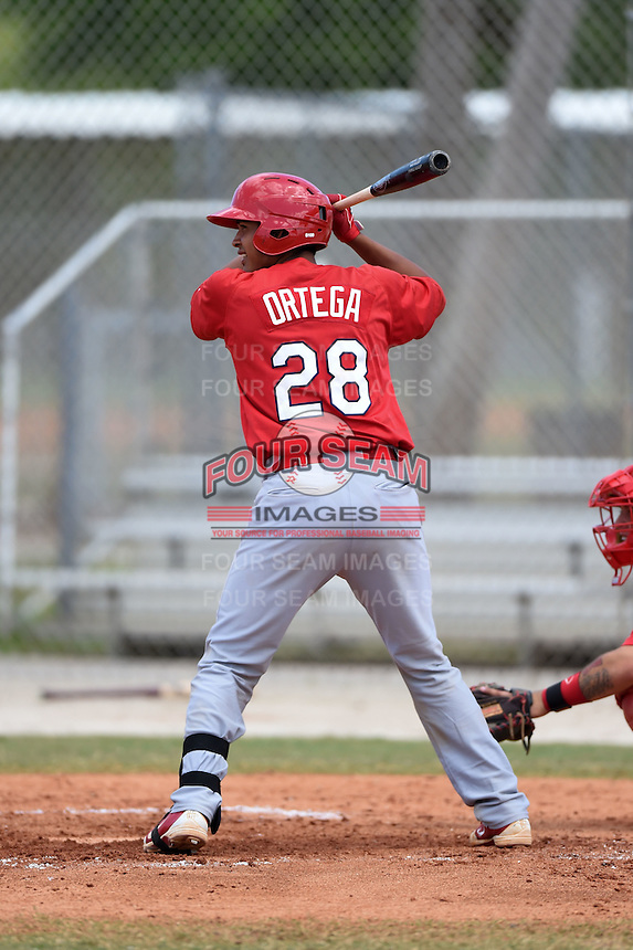 St. Louis Cardinals Rafael Ortega (28) during a minor league spring training game against the New York Mets on April 1, 2015 at the Roger Dean Complex in Jupiter, Florida.  (Mike Janes/Four Seam Images)