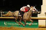 LOUISVILLE, KY - SEP 29: Quick Sand AA (#1, jockey Sasha Risenhoover) wins the Arabian G1 President of the United Arab Emirates Cup Stakes at Churchill Downs, Louisville, Kentucky. Owner Betty J. and Joseph A Gillis; trainer Jerenesto Torrez; by Burning Sand x Triumphs Silkie, by Seyvilla Triumph (Photo by Mary M. Meek/Eclipse Sportswire/Getty Images)