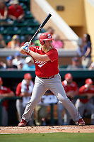 Florida Southern Moccasins designated hitter Walker Burgess (19) at bat during an exhibition game against the Detroit Tigers on February 29, 2016 at Joker Marchant Stadium in Lakeland, Florida.  Detroit defeated Florida Southern 7-2.  (Mike Janes/Four Seam Images)