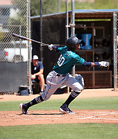 Miguel Perez - Seattle Mariners 2019 extended spring training (Bill Mitchell)
