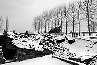 Auschwitz / Poland 2011.Auschwitz/Birkenau Nazi extermination camp. Ruins of Crematorium II destroyed by Nazis with dynamite before liberation of Birkenau by Soviet Union Army in January 1945..Photo Livio Senigalliesi