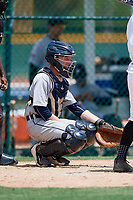 GCL Tigers West catcher Jon Rosoff (8) gives the signs in front of home plate umpire Tre Jester during a game against the GCL Pirates on August 13, 2018 at Pirate City Complex in Bradenton, Florida.  GCL Tigers West defeated GCL Pirates 5-1.  (Mike Janes/Four Seam Images)