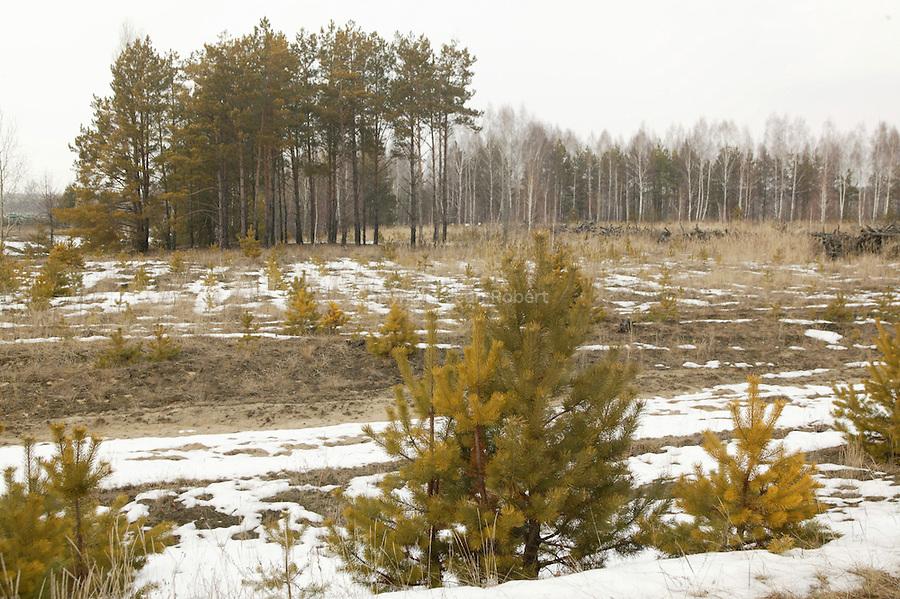 Tchernobyl, Ukraine. Zone d'exclusion des 10 km autour de la centrale de Tchernobyl..Tcernobyl, Ukrainia