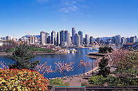 "Vancouver City Skyline, Downtown at Yaletown and ""False Creek"", BC, British Columbia, Canada, Spring - Granville Island and North Shore Mountains (Coast Mountains)"