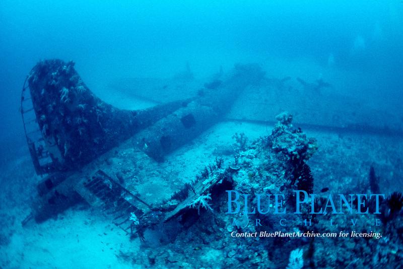 B17 Bomber wreck airplane, Black Jack, Papua New Guinea, Pacific Ocean