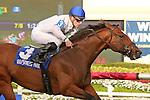 HALLANDALE BEACH, FL - MARCH 04:  Heart to Heart (ON) #3 wth jockey Julien Leparoux on board, wins the Canadian Turf Stakes (Grade III) at Gulfstream Park on March 04, 2017 in Hallandale Beach, Florida. (Photo by Liz Lamont/Eclipse Sportswire/Getty Images)
