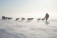 John Baker leads team head-on into 25 mph winds on Norton Sound on his way to Koyuk during Iditarod 2009