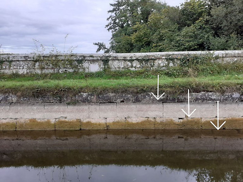 Illustrating the reduction in water levels on the Barrow Line in Co Laois in September 2021 | Credit: Cathal Murphy