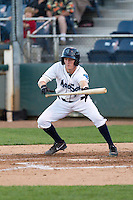 Nelson Ward #2 of the Everett AquaSox squares around to bunt during a game against the Tri-City Dust Devils at Everett Memorial Stadium in Everett, Washington on July 28, 2014. Tri-City defeated Everett 6-5 in 11 innings.  (Ronnie Allen/Four Seam Images)
