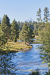 The Metolius River, a tributary of the Deschutes River in Oregon, is unique in bursting from the ground full size from artesian sources providing a volume that never varies year round.  Prime trout and salmon habitat in the Oregon Cascade Mountain Range.