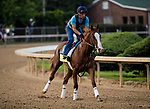 LOUISVILLE, KY - MAY 02: Free Drop Billy gallops in preparation for the Kentucky Derby at Churchill Downs on May 2, 2018 in Louisville, Kentucky. (Photo by Alex Evers/Eclipse Sportswire/Getty Images)