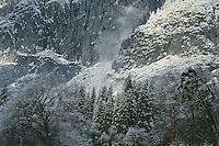 Yosemite Valley after a snowstorm, looking west from El Cap Meadow.