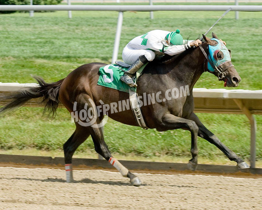 Song Cycle winning at Delaware Park on 7/4/09