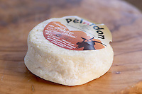 French goat cheese - chevre - Pelardon on a wooden table. Medium aged (half dry) type Clos des Iles Le Brusc Six Fours Cote d'Azur Var France