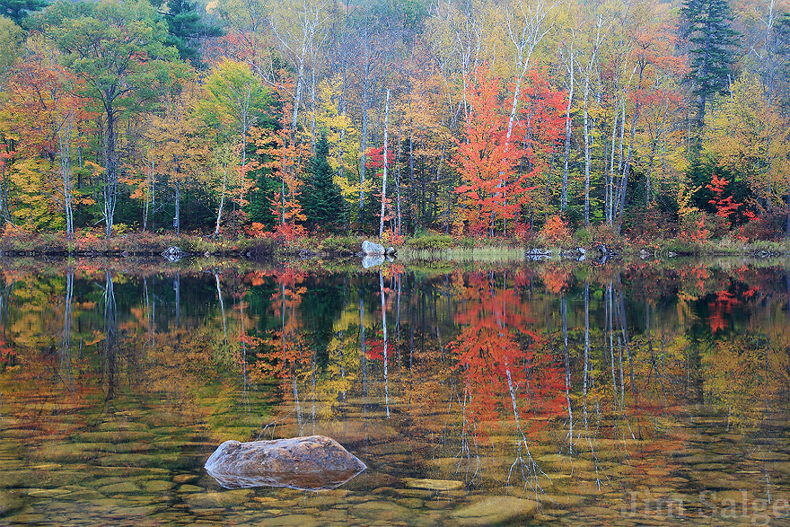 A pond filled with stones reflects autumn color in the White Mountains of New Hampshire.
