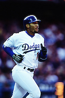 Gary Sheffield of the Los Angeles Dodgers during a game at Dodger Stadium circa 1999 in Los Angeles, California. (Larry Goren/Four Seam Images)