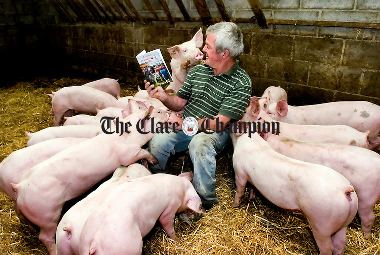 And This Little Piggy...<br /> Noel Lorrigan gets his charges ready for the Pig Races at Kilmihil Festival of Fun. 27-7-07
