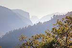 Big Oak Flat Road view in Yosemite National Park, CA, USA