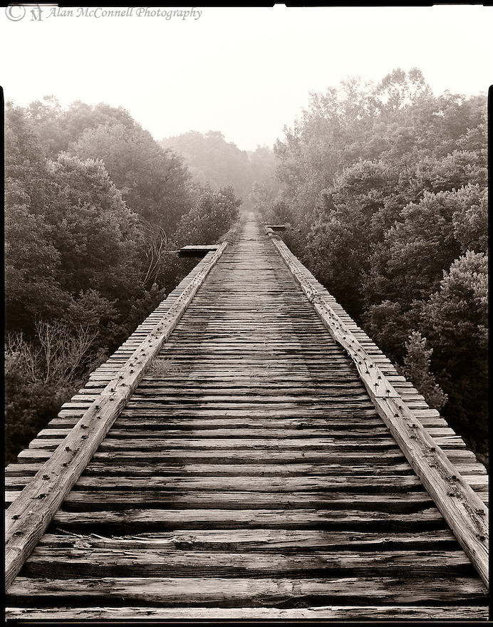 """""""Tracks In Time""""<br />  High Bridge over Deer Creek,<br /> Delphi, Indiana<br /> 2009<br /> An easy, 1-mile hike along the old Monon Trail, part of the Delphi trail system, will bring you to High Bridge.  The abandoned rail bridge crosses over Deer Creek, that James Whitcomb Riley wrote about in his poem """"On the banks o' Deer Crick.""""  <br /> A story from a Delphi historian pointed out how, back in the 1920's, this Dear Creek Valley was proposed to be a state park.  However, when the Great Depression hit, that idea fell through.  So, when you walk out to the middle of the span, if you can handle heights, you'll have a fine view of this beautiful valley along with Whistler Woods , an adjacent NICHES Land Trust preserve.   <br /> <br /> """"Tracks""""<br /> Poem by Elaine McConnell<br /> <br /> Tracks<br /> Going away or going to<br /> Somewhere known or somewhere new.<br /> <br /> Tracks<br /> Lines so close, but fade afar<br /> Closeness and distance, like the stars.<br /> <br /> Rails to nowhere<br /> Not unlike my mind<br /> Thoughts to guide and unwind.<br /> <br /> High Bridge, a bridge no more<br /> Holds the tracks above the woods<br /> Enables eyes to view nature's goods.<br /> <br /> Black and white,<br /> Is it real?<br /> Are there shades or gray, or is it steel?<br /> <br /> Eyes can see what they want<br /> Tracks that come or tracks that go<br /> Only my mind is to know.<br /> <br /> 4 x 5 Large Format Film"""