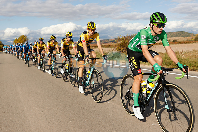 The peloton including Green Jersey Primoz Roglic (SLO) and Team Jumbo-Visma during Stage 8 of the Vuelta Espana 2020 running 160km from Logroño to Alto de Moncalvillo, Spain. 28th October 2020.   <br /> Picture: Luis Angel Gomez/PhotoSportGomez | Cyclefile<br /> <br /> All photos usage must carry mandatory copyright credit (© Cyclefile | Luis Angel Gomez/PhotoSportGomez)