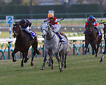 Gold Ship (Stay Gold x Point Flag, Mejiro McQueen), with Hiroyuki Uchida in the irons, wins the Arima Kinen on December 23rd, 2012.