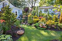Small lawn walkway between beds in California plant collector garden - Carol Brant