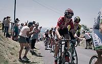 Tiesj Benoot (BEL/Lotto-Soudal) up the Montée de Naves d'Aubrac (Cat1/1058m/8.9km/6.4%)<br /> <br /> 104th Tour de France 2017<br /> Stage 15 - Laissac-Sévérac l'Église › Le Puy-en-Velay (189km)
