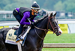 October 2, 2020: Liveyourbeastlife exercises as horses prepare for the Preakness Stakes at Pimlico Race Course in Baltimore, Maryland. Scott Serio/Eclipse Sportswire/CSM