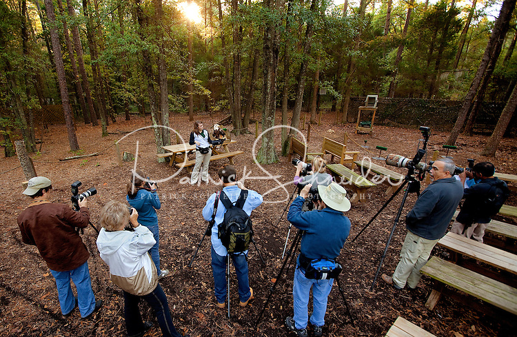 Through its mission of environmental stewardship and conservation, the Carolina Raptor Center helps birds of prey through rehabilitation, research and public education. The center is located at 6000 Sample Road, Huntersville, NC.