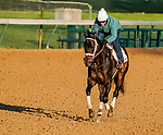 April 26, 2021: Will's Secret, trained by trainer Dallas Stewart, exercises in preparation for the Kentucky Oaks at Churchill Downs on April 26, 2021 in Louisville, Kentucky. Scott Serio/Eclipse Sportswire/CSM