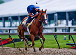 BALTIMORE, MD - MAY 16: Good Magic gallops in preparation for the Preakness at Pimlico Race Course on May 15, 2018 in Baltimore, Maryland (Photo by Scott Serio/Eclipse Sportswire/Getty Images)