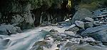 Rocky Gorge in the Upper Styx River. Westland Region. New Zealand.