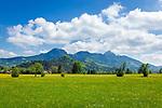 Deutschland, Bayern, Rosenheimer Land, das Leitzachtal bei Fischbachau, der Radweg Bodensee-Koenigssee fuehrt hier entlang, im Hintergrund der Wendelstein, ein 1838 Meter hoher Berg der Bayerischen Alpen. Er gehoert zum Mangfallgebirge, dem oestlichen Teil der Bayerischen Voralpen. Er ist hoechster Gipfel des Wendelsteinmassivs, ist mit der Wendelstein-Seilbahn und der Wendelstein-Zahnradbahn erschlossen. Auf dem Gipfel des Berges befindet sich die Wendelstein-Kapelle auch Wendelsteinkircherl genannt, eine Sternwarte, eine Wetterwarte und die weithin sichtbare Sendeanlage des Bayerischen Rundfunks | Germany, Bavaria, Rosenheimer Land, Leitzach Valley near Fischbachau, at background Wendelstein mountain with observatory, weather station and transmitter of the Bayerischer Rundfunk, a Bavarian radio and tv-station