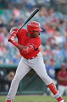 Springfield Cardinals Johan Mieses (41) bats during a Texas League game against the Frisco RoughRiders on May 4, 2019 at Dr Pepper Ballpark in Frisco, Texas.  (Mike Augustin/Four Seam Images)
