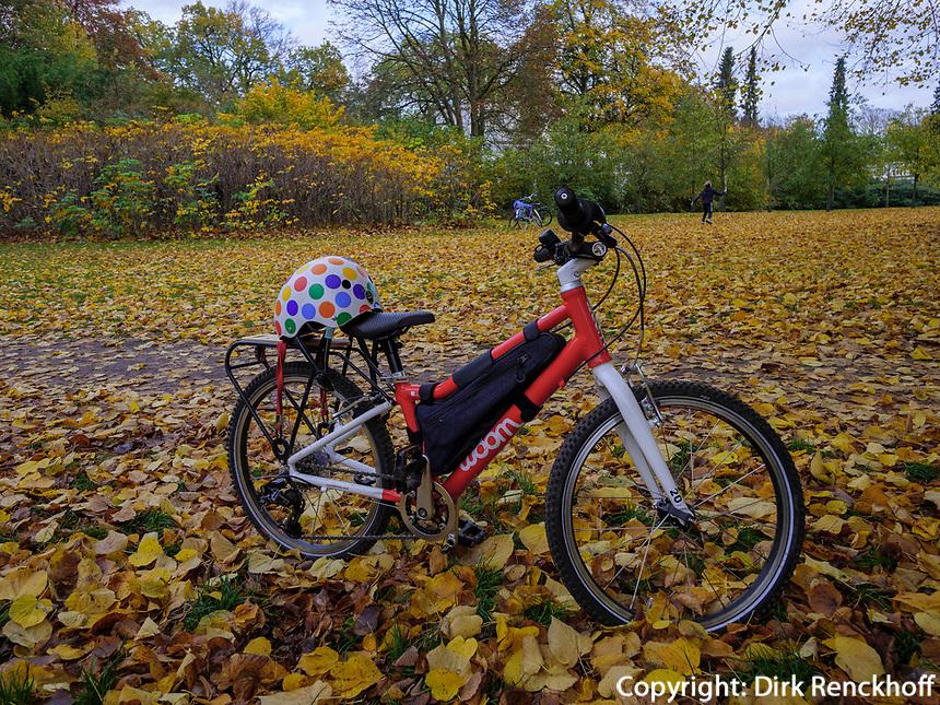Altweibersommer, Fahrrad im Hirschpark in Hamburg-Blankenese, Deutschland, Europa<br /> Indian Summer, bicycle, Hirschpark in Hamburg-Blankenese, Germany, Europe