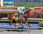 HALLANDALE BEACH, FL - FEB 17:Aztec Sense #4 trained by Jorge Navarro with Paco Lopez in the irons wins the $50,000 Rough and Ready Claiming Stakes at Gulfstream Park on February 17, 2018 in Hallandale Beach, Florida. (Photo by Bob Aaron/Eclipse Sportswire/Getty Images)