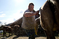Donny Inwell, from Snohomish, Wash. grooms a horse on April 1, 2014 that belonged to Summer Raffo who was killed in the Oso mudslide on March 22, 2014 in Oso, Wash.