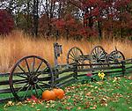 Bureau, County, IL<br /> Wagon wheel and fenceline along native tallgrass prairie and woods - late fall