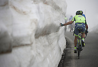 A Tinkoff rider couldn't resist getting a feel of the snow up the misty Colle dell'Agnello (2744m)<br /> <br /> stage 19: Pinerolo(IT) - Risoul(FR) 162km<br /> 99th Giro d'Italia 2016